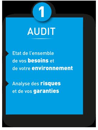 audittoggle